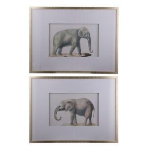 סט 2 יחידות תמונת פילים